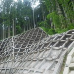 IMGP4601